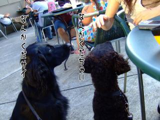 南町田でカフェ♪(1)