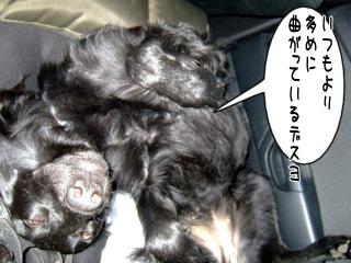 フラットキャンプ参加~♪(2)