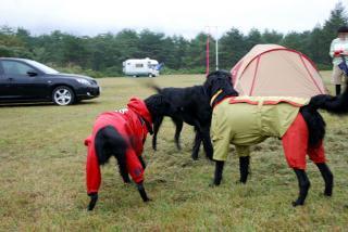 フラットキャンプ参加~♪(10)