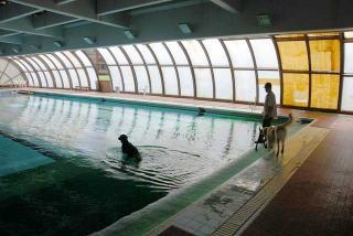 ジンガ初泳ぎに挑戦の巻(2)