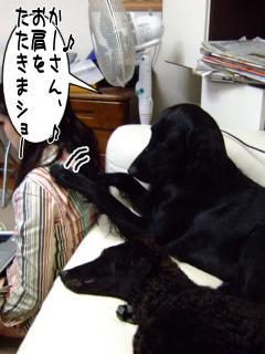 良い子(?)ルーア(1)
