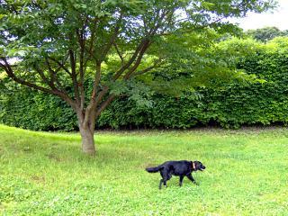 四季の森公園(2)