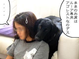 ままのこと(1)