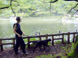井の頭公園~吉祥寺散策(3)