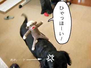 猿太彦くんのライディング(1)