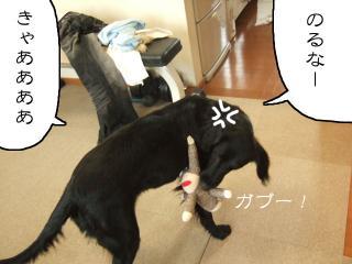 猿太彦くんのライディング(5)