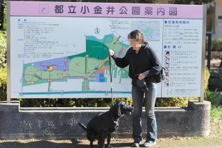 小金井公園寒かったよ・・・・(1)