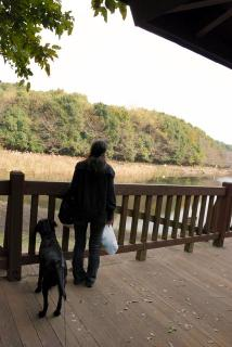 泉の森公園(4)
