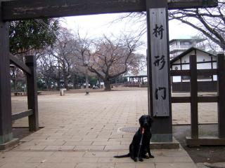 生田緑地はでかかった(3)