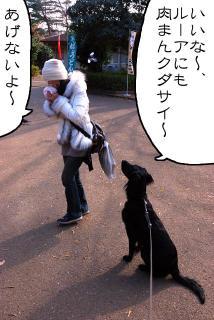 所沢航空記念公園へ行ってみたゾ(4)