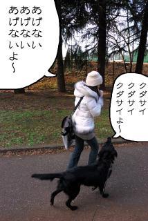 所沢航空記念公園へ行ってみたゾ(5)