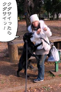 所沢航空記念公園へ行ってみたゾ(6)