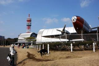 所沢航空記念公園へ行ってみたゾ(7)