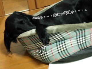 熟睡(2)