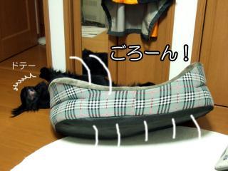 熟睡(3)