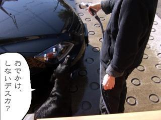 たまには洗車(1)