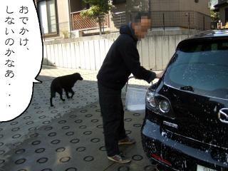 たまには洗車(2)