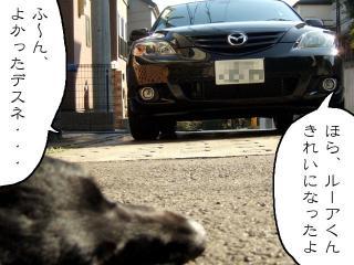 たまには洗車(7)