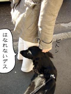 お見送り(2)