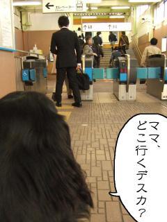 お見送り(3)