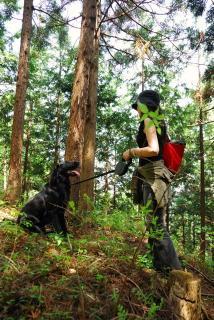 丹沢―高取山・仏果山ハイキングコース(5)