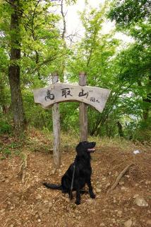丹沢―高取山・仏果山ハイキングコース(12)