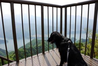 丹沢―高取山・仏果山ハイキングコース(16)