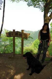 丹沢―高取山・仏果山ハイキングコース(18)