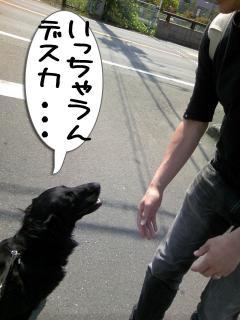 お見送り2(1)