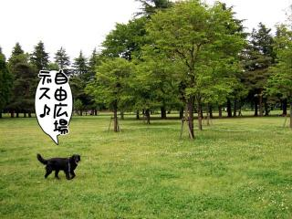 公園はしご~野川公園、武蔵野の森公園~(3)