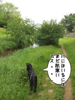 公園はしご~野川公園、武蔵野の森公園~(5)
