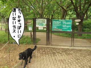 公園はしご~野川公園、武蔵野の森公園~(7)