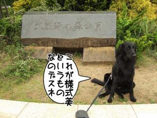 公園はしご~野川公園、武蔵野の森公園~(9)