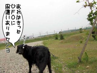 公園はしご~野川公園、武蔵野の森公園~(15)