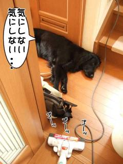 ルーアくんと掃除機(3)