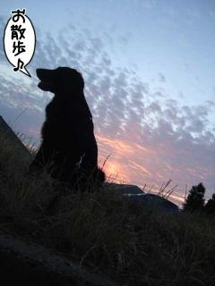 なんでもない一日(1)