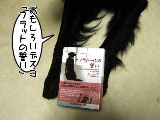 犬本紹介その37-「ラブラドールの誓い」(1)