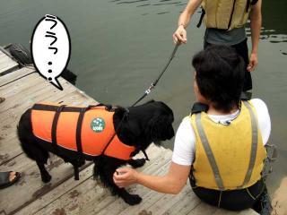 カヌー犬へ道っ!(8)