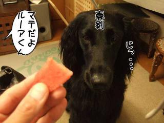 スイカうまいね(2)