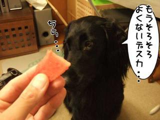 スイカうまいね(3)