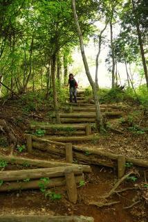 丹沢―高取山・仏果山ハイキングコース(26)