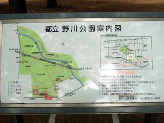 公園はしご~野川公園、武蔵野の森公園~(2)