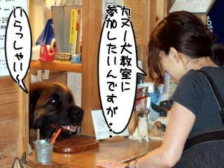 カヌー犬へ道っ!(2)