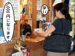 カヌー犬へ道っ!(3)