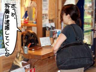 カヌー犬へ道っ!(4)