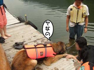 カヌー犬へ道っ!(9)