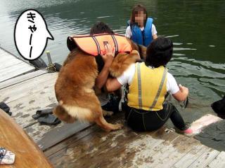 カヌー犬へ道っ!(11)