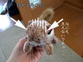 わんこおもちゃたち(1)
