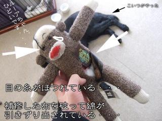 わんこおもちゃたち(5)