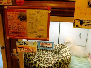 百万円とスーツケース(1)